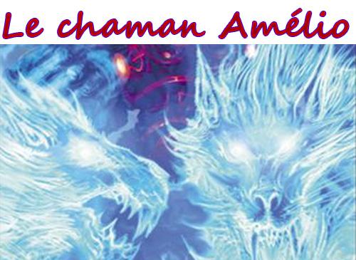 template Chaman amélioration 85 pour un max DPS